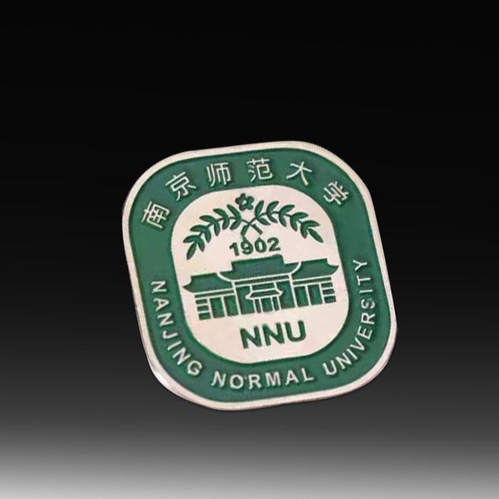 university-school-badge-pins